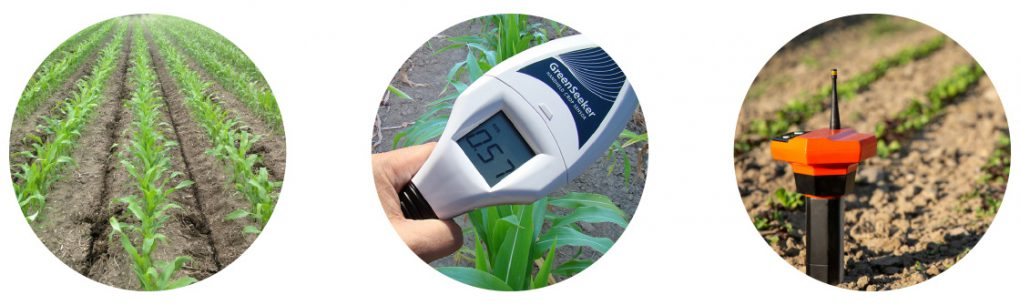 Measuring Early-Season Nitrogen